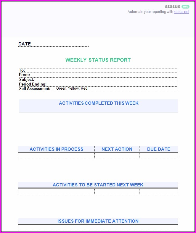 Employee Weekly Activity Report Template Word