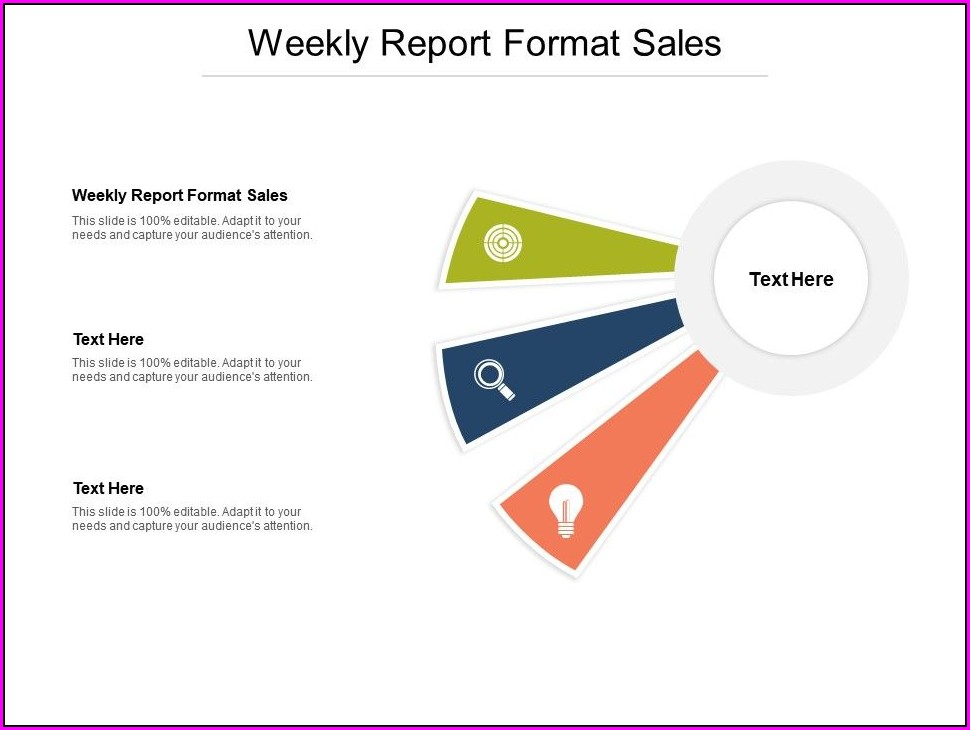 Weekly Sales Report Format