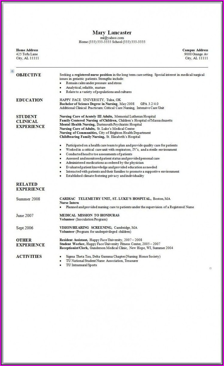 Word 2007 Resume Templates Free